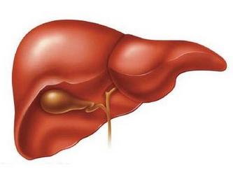 灵芝孢子粉治疗肝癌么