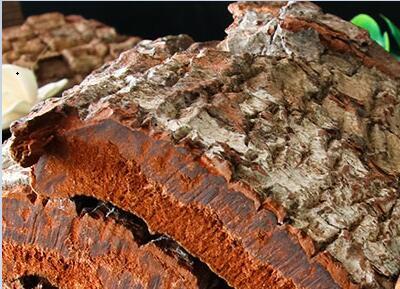 安哥拉树皮